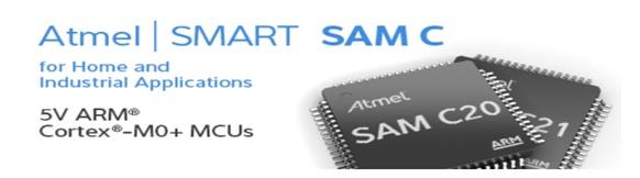 Cortex M0+ ATSAMC2x 電梯及工業通訊應用